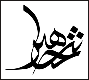 KhalidShahin-Identity