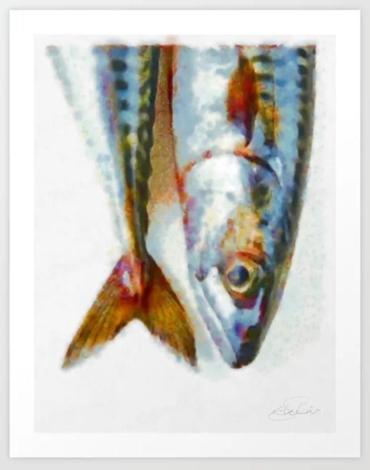 Mackerel fish by Khalid Shahin