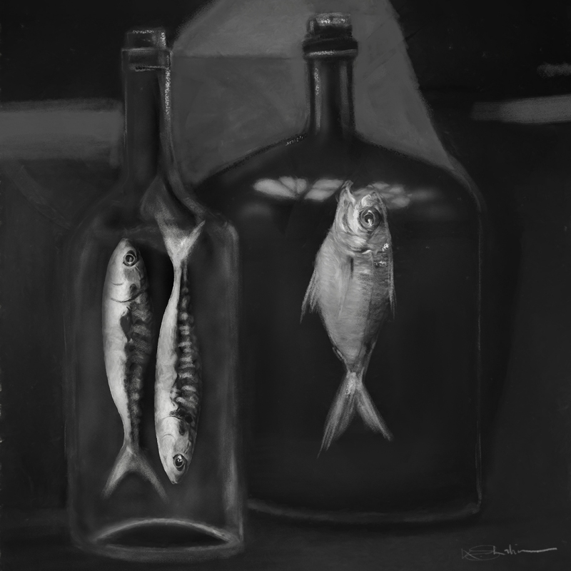 Fishes in bottles - Charcoal Limited edition